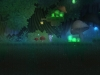 stonerid_swamp_6-jpg